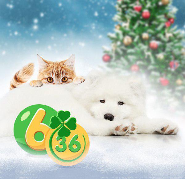 призы новогоднего 174 тиража лотереи 6 из 36