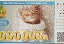 Проверить билет 181 тиража лотереи 6 из 36